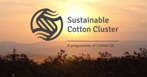 Cotton Cluster Image
